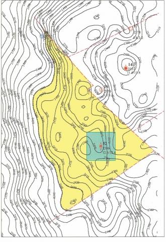 Рис.8. Западно-Новомолодежное месторождение