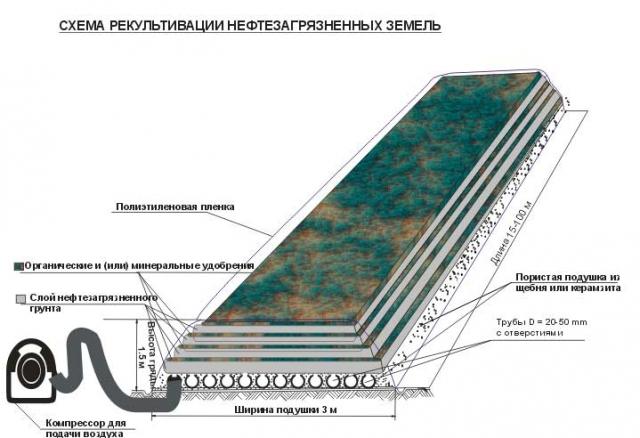 Рис. 1. Схема рекультивации нефте загрязненных земель