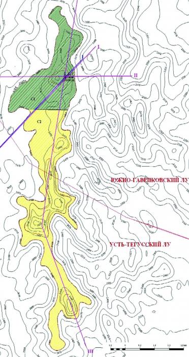 Рис.12. Подсчетный план по пласту Ю4 Южно-Гавриковского месторождения