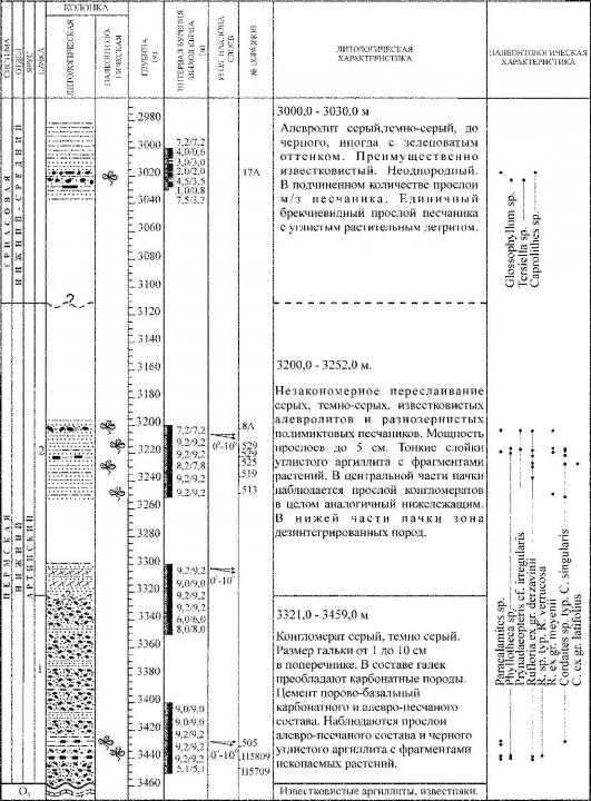 Рис. 3. Разрез нижнепермских отложений, вскрытых скважиной Лекосская — 27. Условные обозначения см. рис. 4