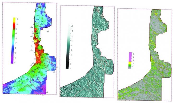 Рис. 9. Карта геометрического атрибута ОГ С1: а — карта изохрон; б — карта разностей (difference); в — карта градиентов наклонов (dip)