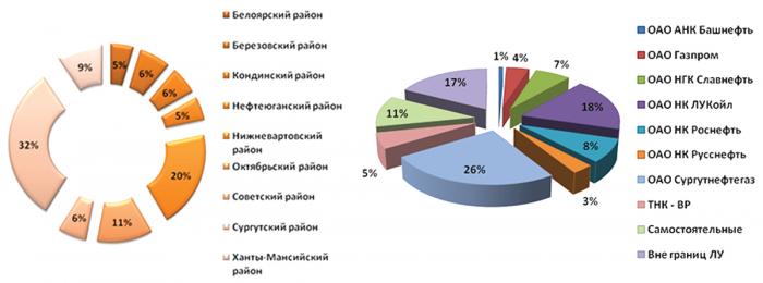 Рис. 12. Распределение нарушенных участков по районам и компаниям-недропользователям