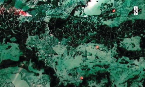 Рис. 4. Горение нескольких факельных установок на Варьеганском лицензионном участке (синтез каналов 7-3-4 Landsat-8 дата съёмки 17.01.2015г.)
