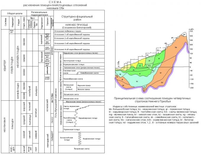 Рис. 1. Схема расчленения плиоцен-плейстоценовых отложений низовьев Оби.