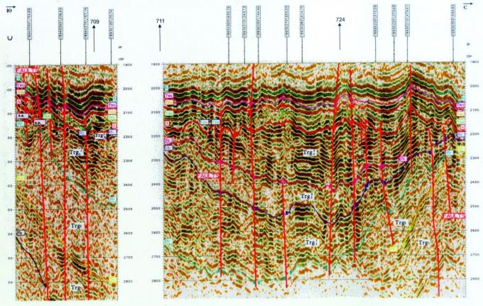 Рис.4. Временной сейсмический разрез по профилям 18940010, 18930110, Сосновская площадь