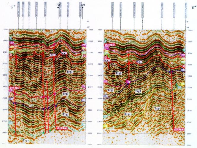 Рис.5. Временной сейсмический разрез по профилям 18930260, 18930250, Восточно-Рогожниковская площадь