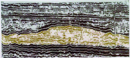Рис.5. Субмеридиональное сечение фронтальной части сейсмокомплекса.