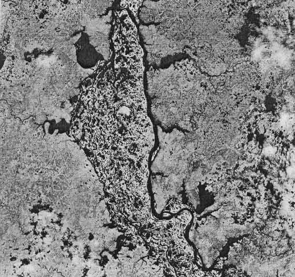Рис.1. Мелкомасштабный космический снимок регионального уровня генерализации