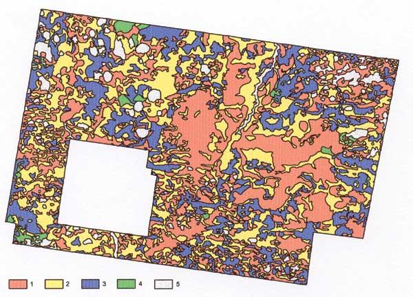 Рис. 3. Уменьшенный фрагмент карты космофотонефтепрогнозной оценки «нераспределенных» земель южной части Приобско-Айпимской зоны. 1-3 – Земли, оцененные дистанционным способом как: 1 – нефтеперспективные, 2 – малоперспективные, 3 – бесперспективные. 4-5 – Отказ от оценки из-за: 4 – неуверенной интерпретации, 5 – природных помех космодешифрированию (пойма водотоков, озера).