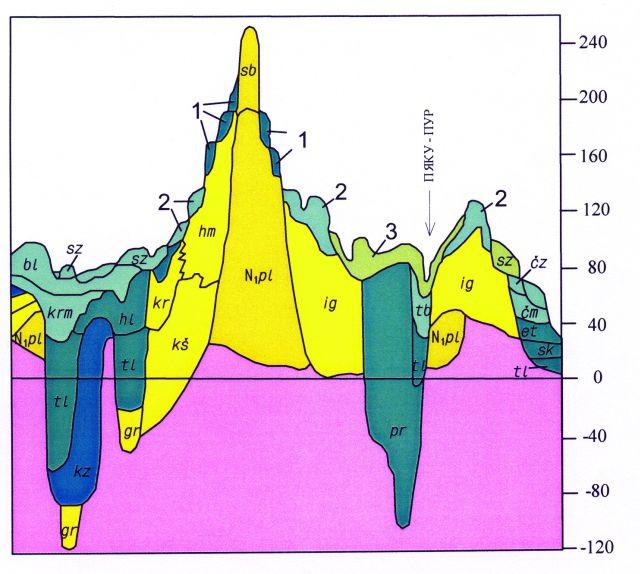 Рис.3. Схема соотношений плиоцен-четвертичных стратогенов Тюменско-Салехардского субрегиона. Фрагмент.