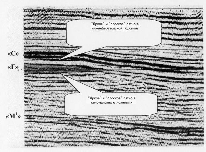 """Рис.3. Сейсмический образ """"яркого"""" и """"плоского"""" пятна в верхнемеловых отложениях Комсомольского месторождения"""