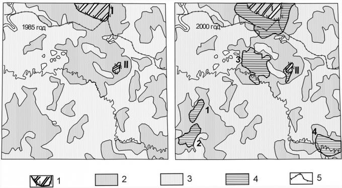 Рис.2. Пример проверки временем рекогносцировочного космофотонефтепрогнозирования (бассейн нижнего течения р.Демьянка) 1 — месторождения, выявленные до нефтепрогнозного космодешифрирования (I-Верхнесалымское, II-Нижнекеумское); 2-3- земли, оцененные по космическим снимкам, как: 2 — нефтеперспективные, 3 — бесперспективные; 4-месторождения, открытые после космодешифрирования. (1-Северо-Кальчинсоке, 2-Кальчинское, 3-Северо-Демьянское, 4-Пихтовое); 5 — административная граница ХМАО.