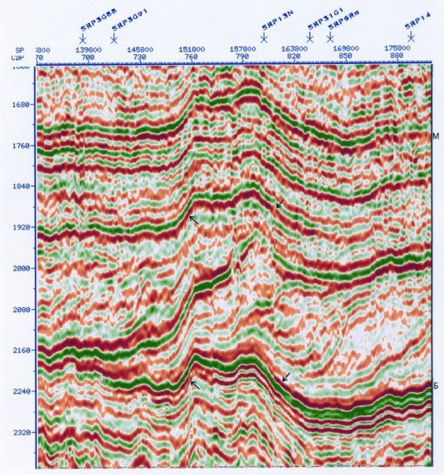 Рис.1. Морфологические особенности отраженных волн в орточехле Айпимского малого вала (SRPXIII, фрагмент)