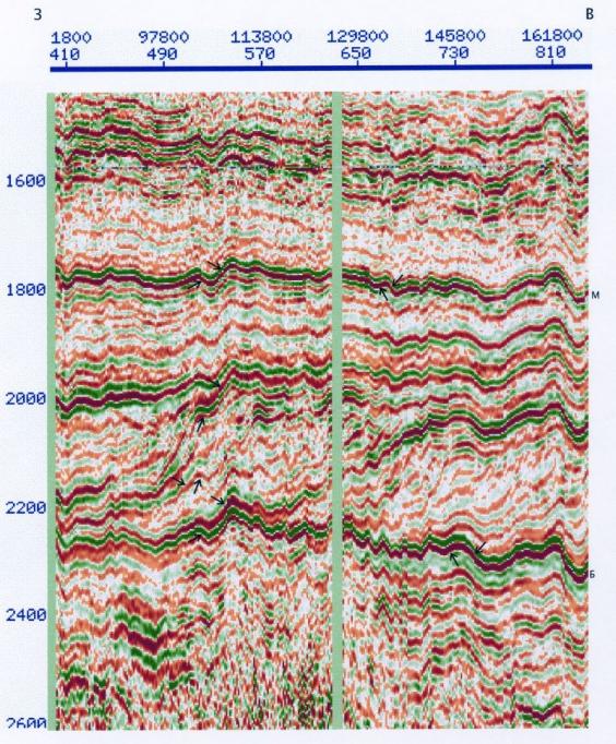 Рис.2. Морфологические особенности отраженных волн в орточехле (SRP1Ra, фрагмент; поднятие на пк 113000 — Туманный вал, южная часть)