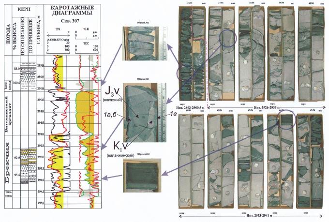 Рис.1. Керновый материал из зоны аномального разреза Северо-Конитлорской скв.307