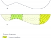 Рис.1. Схематический палеофациальный профиль нижнеюрских отложений Западной Сибири (широтное сечение)